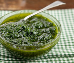 Homemade Fresh Mint Sauce
